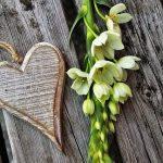 7 ביטויים של אהבה שכיף לשמוע